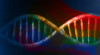 Evolution and genetics: The science of homosexuality?