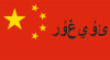 The oppression of Muslim Uighurs in China